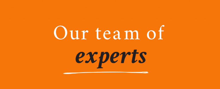our team of experts banner